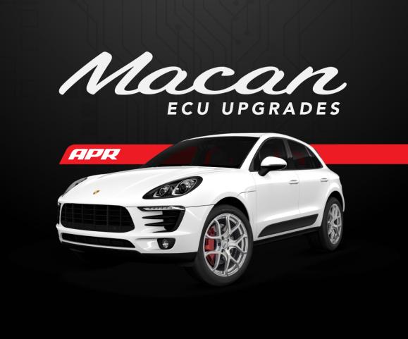 macan-ecu-579x481